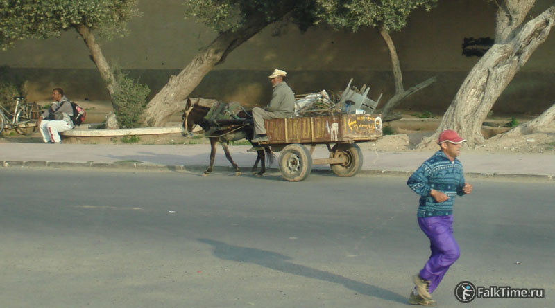 Повозка и бегун