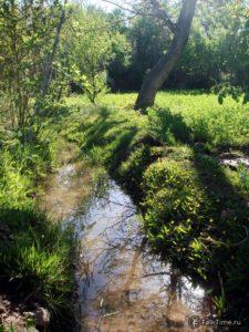 Ручей, отражение в воде