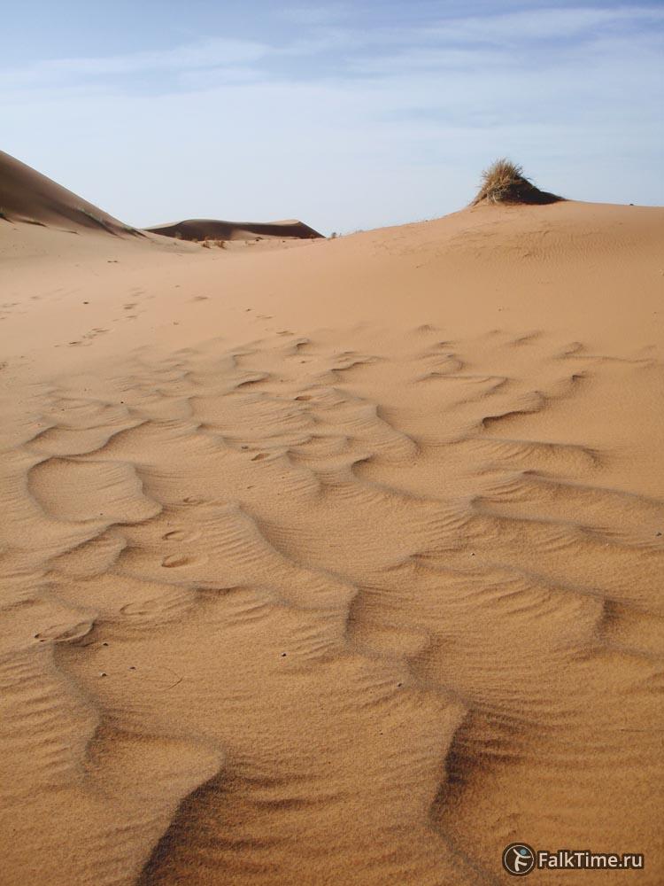 Тёмный песок