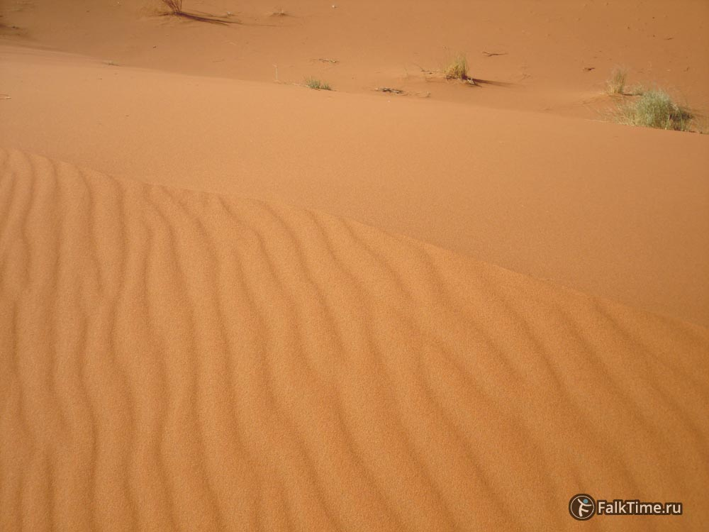 Гребень дюны