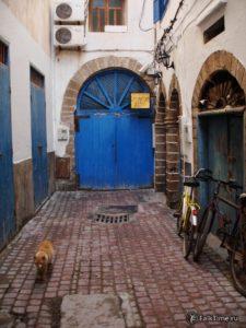 Тупик с дверью и рыжим котом
